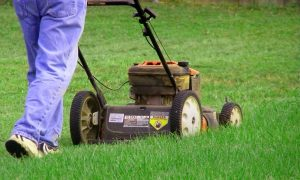 bigstock-man-mowing-yard-54