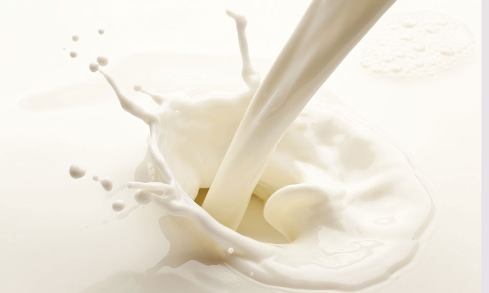milk stock image