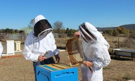 FarmBiosecurity-beekeepers