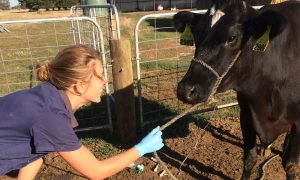 FarmBiosecurity-Sarah