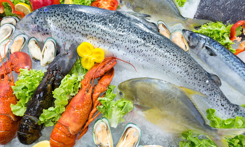 seafood-fresh-stock-image