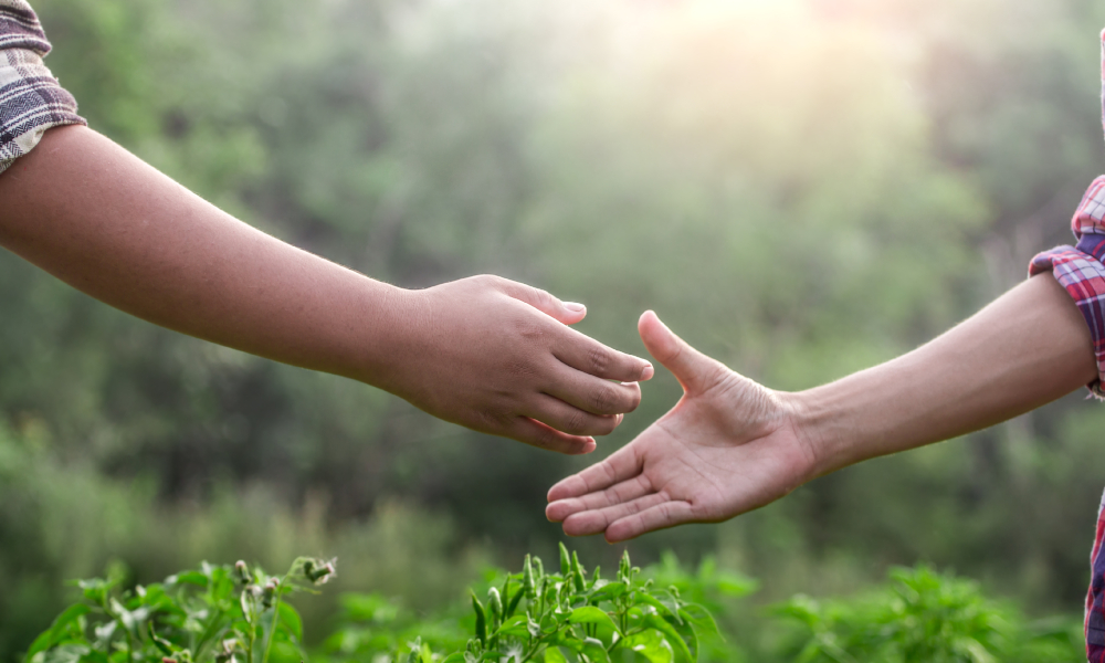 farmer help support shaking hands stock image