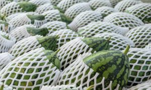melon traceability