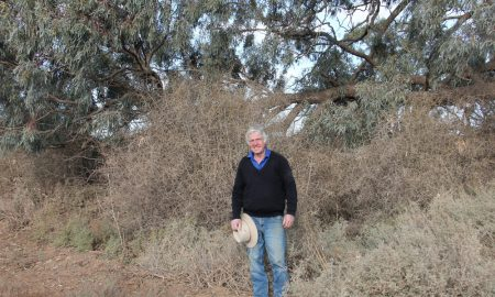 Dennis Stewart and African boxthorn. Image courtesy of Western Local Land Services