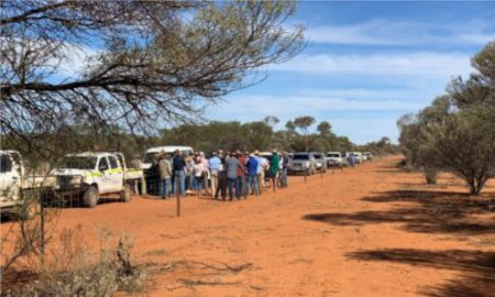 Murchison Hub Wild Dog Exclusion Fence